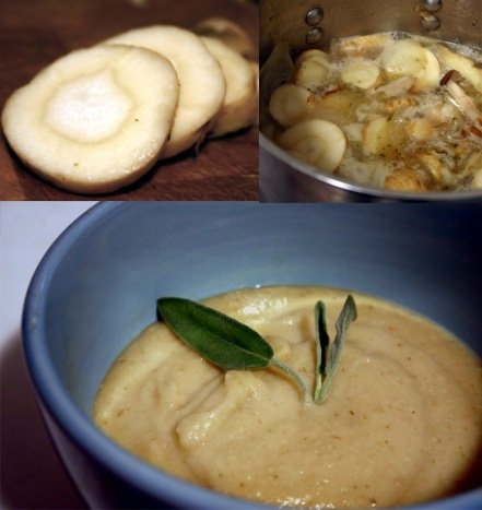 Savory Parsnip Bisque with Sage. Photo © The Discerning Brute